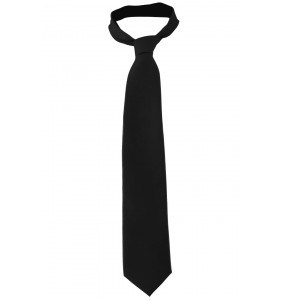 Narrow Solid Tie